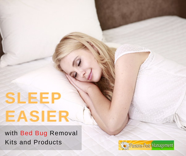 Sleep Easier with Bed Bug Removal Kits and Products